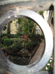 One of the hundreds of secret gardens you can spy while walking around the city.