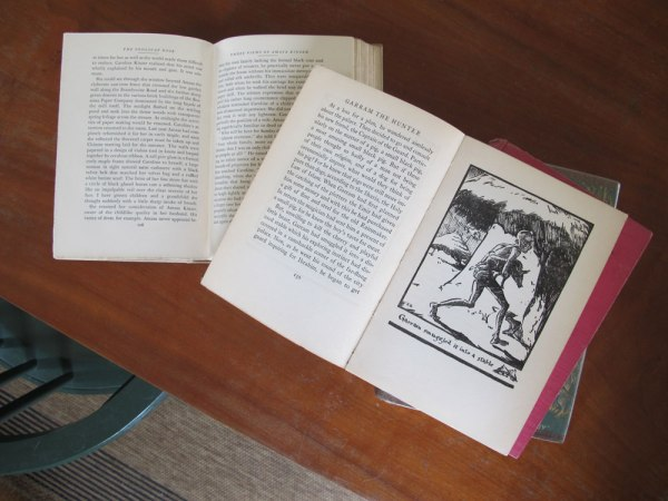Ohio_book_interiors_IMG_8749