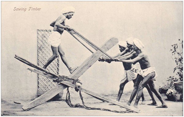 sawing_timber_postcard_india