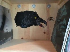 crow_IMG_4214