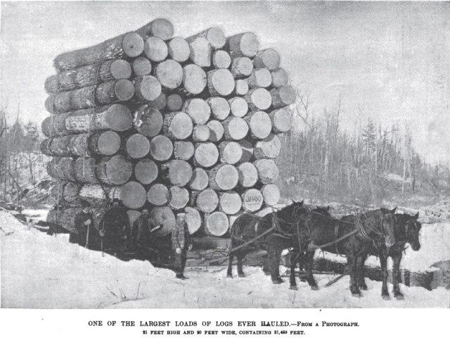 1878-logging