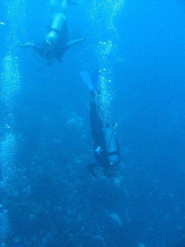 Sailing_DivingII