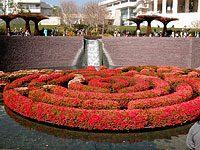 Los Angeles - Getty Museum Gardens
