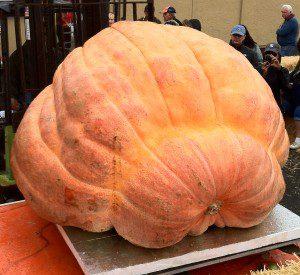 Winning 1,704-pound pumpkin at Half Moon Bay's World Championship Pumpkin Weigh-Off 2011