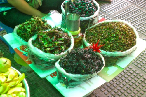 Crispy insects (deep-fried crickets, tarantulas, beetles and grasshoppers) at Central Market in Phnom Penh, Cambodia © B. Miller