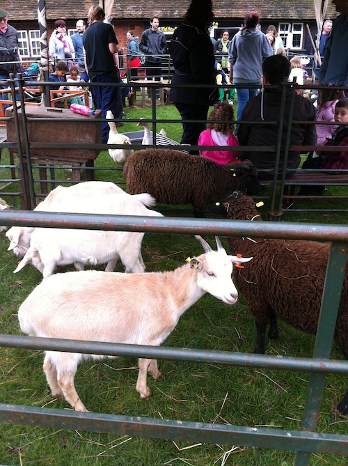 Farm animals at Ruislip Duck Pond Market – © LoveToEatAndTravel.com