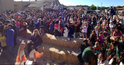 Half Moon Bay World Championship Pumpkin Weigh-Off 2013 – © LoveToEatAndTravel.com