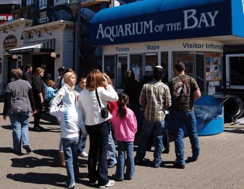 Aquarium of the Bay, Pier 39, San Francisco - photo © LoveToEatAndTravel.com
