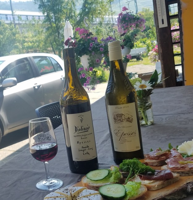 Lavaux Cave de Moratel wine tasting at the winery with train and vineyards in background - Credit: Deborah Grossman