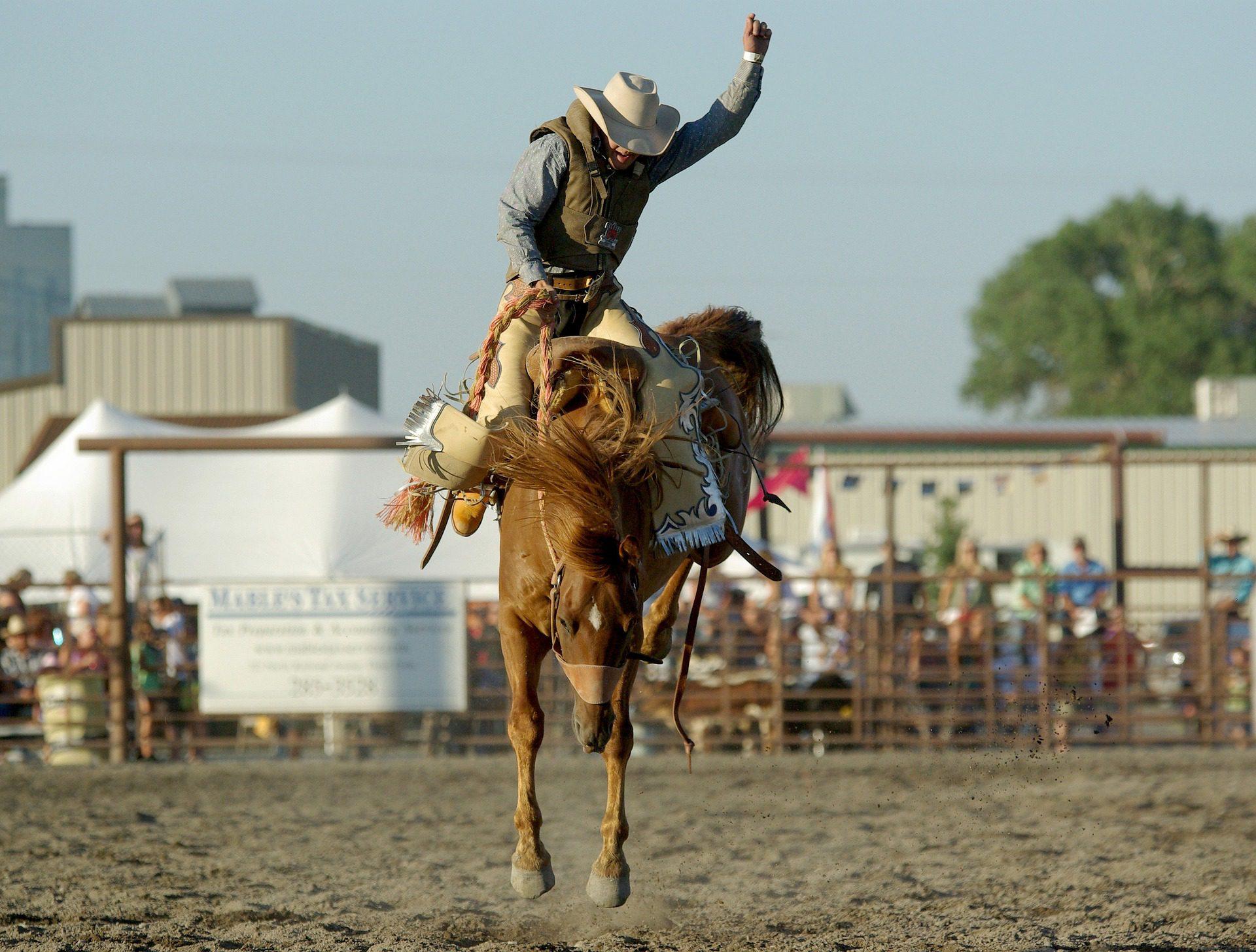Texan rodeo