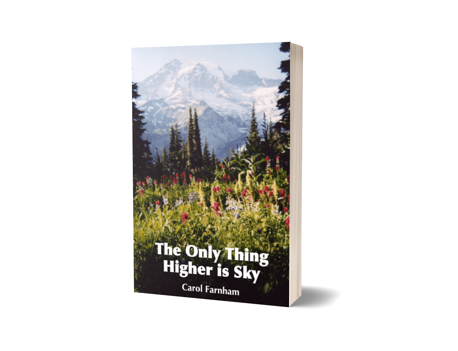 The Only Thing Higher is Sky