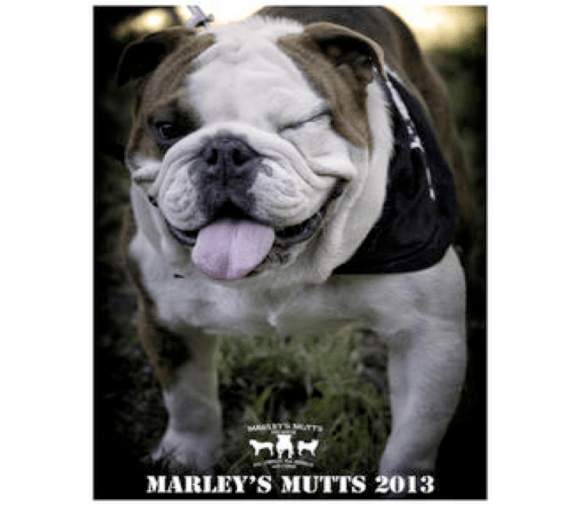 Marley's Mutts Dog Rescue