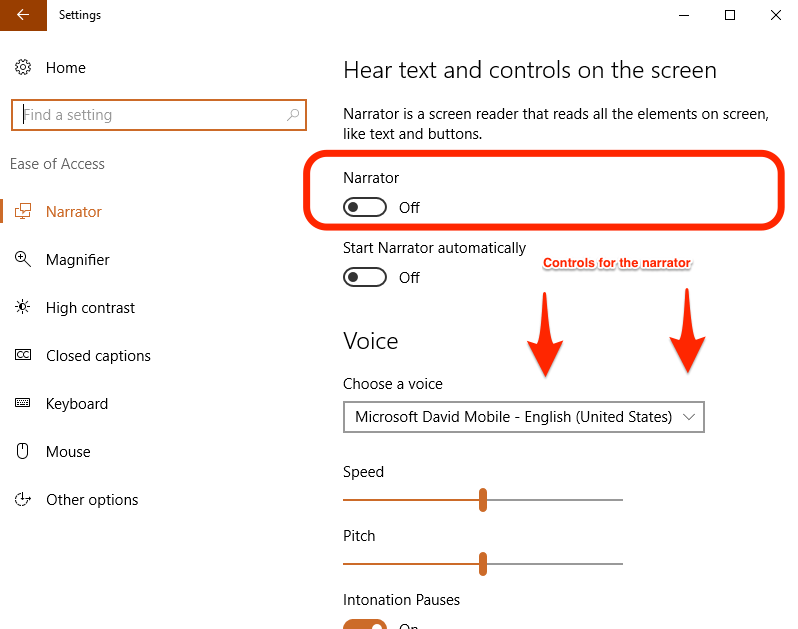 Setting up Microsoft Voice Controls