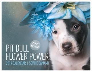 Pitbull Flower Power 2019 by Sohpie Gamand
