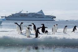 Ponant Theme Cruises