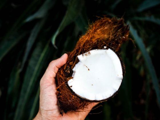 eine Hand, die eine halboffene Kokosnuss hält