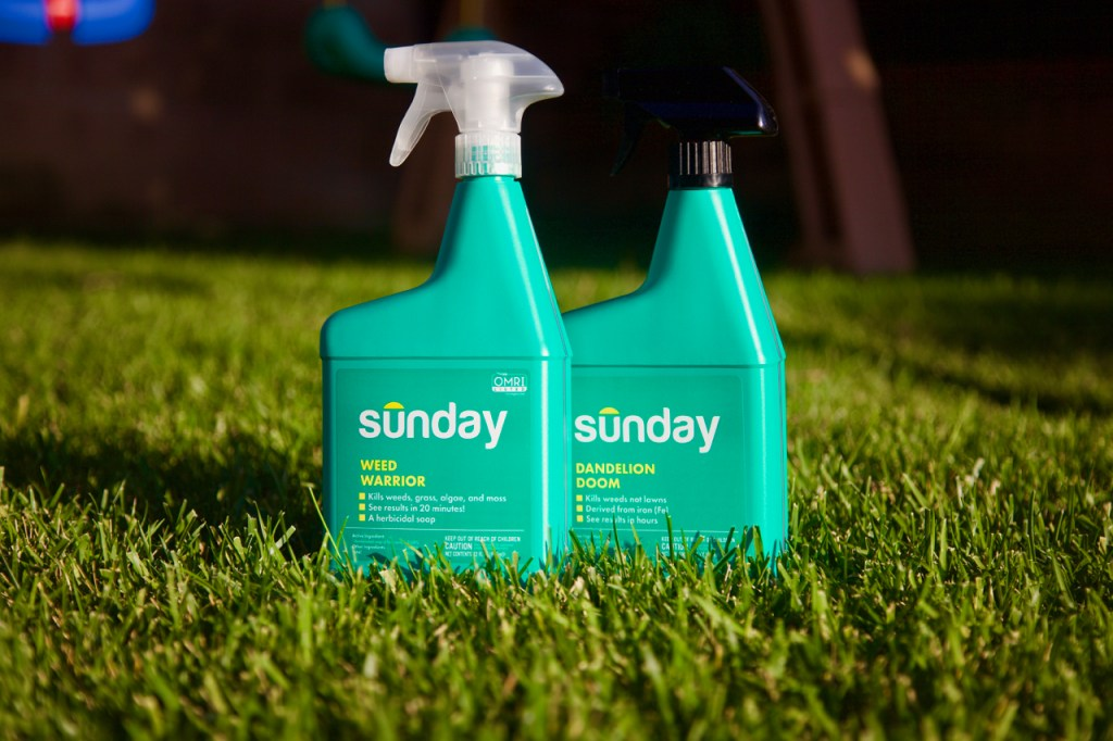 Get Sunday Weed Control
