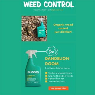 Get Sunday's new Weed Control products