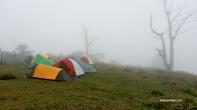 Mt Ugo Fog