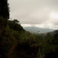 Trail to Mt Ugo