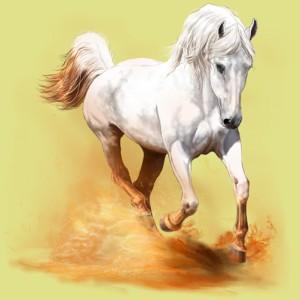 equideow horse