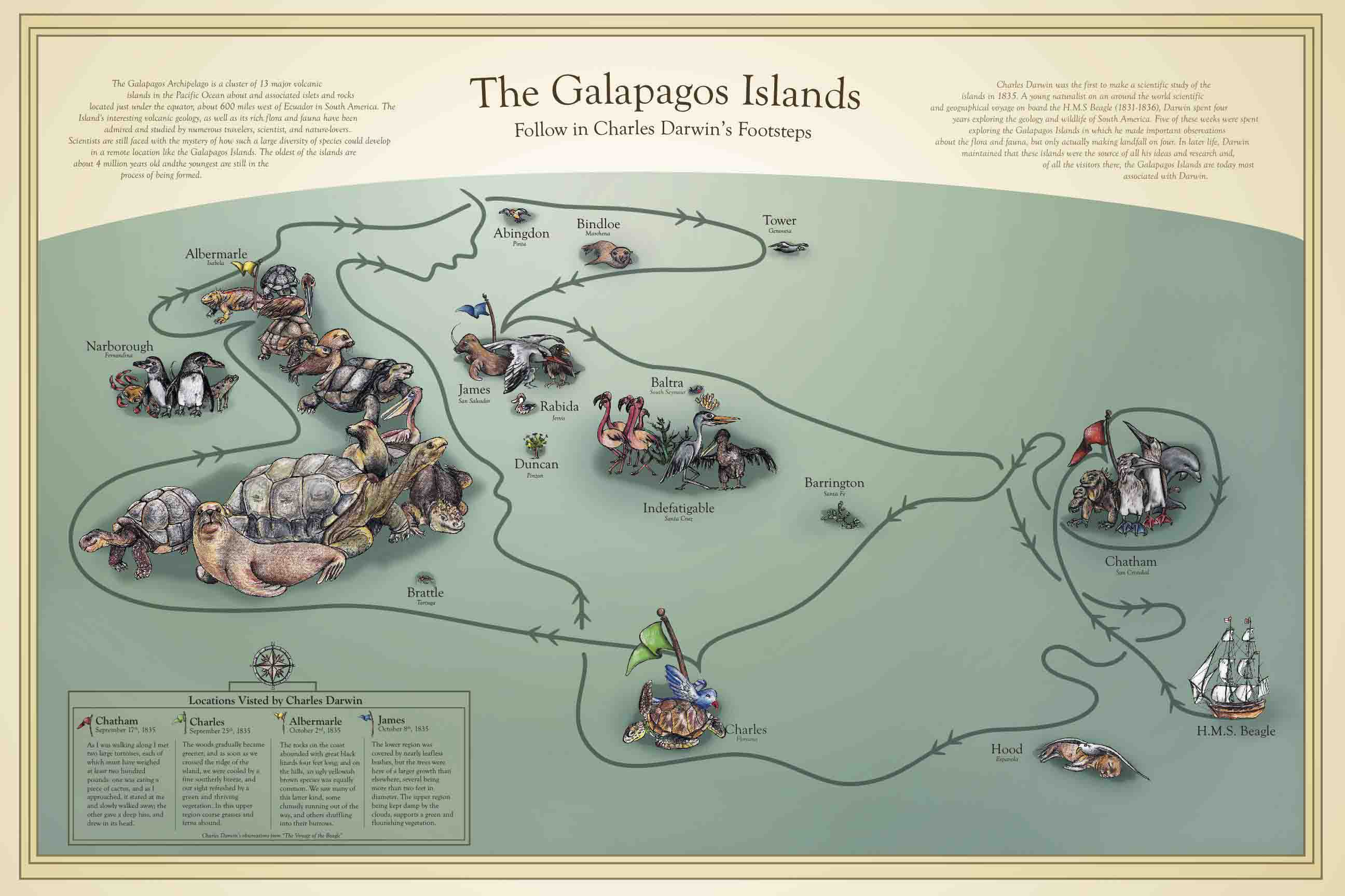 The Galapagos Islands A Natural Selection For Divers