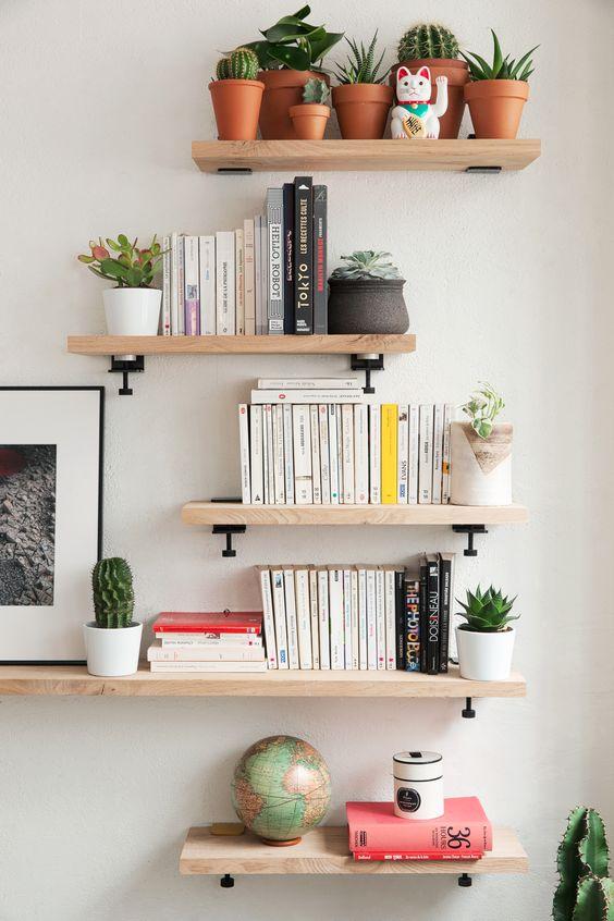 Décorer sa bibliothèque avec des plantes
