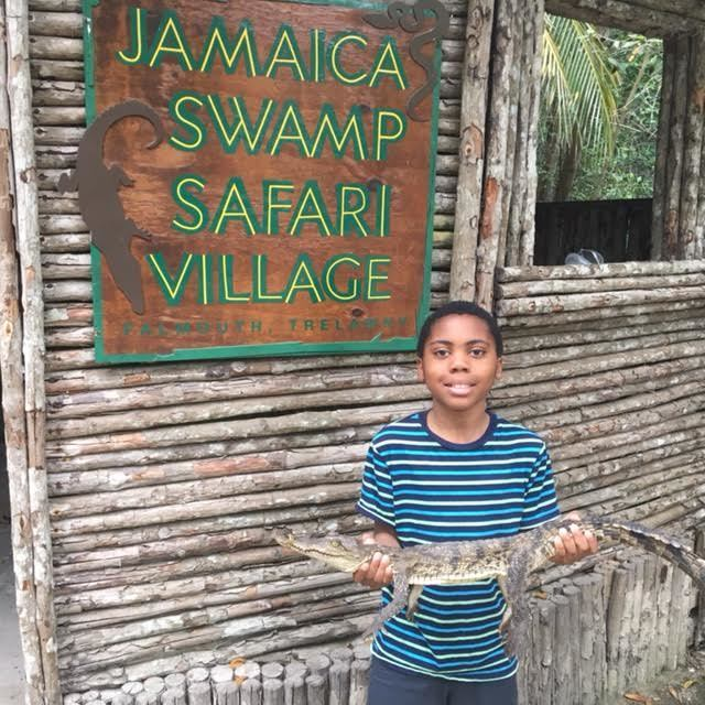Things to do in Falmouth: Holding a crocodile at Jamaica Swamp Safari Village. Photo credit: S. Woodhouse
