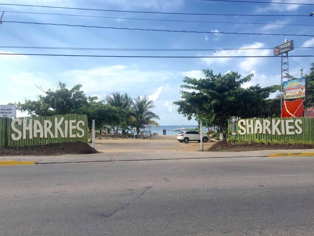 Beaches in Jamaica - Sharkies