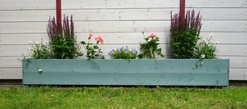 home made trough planter wild thyme garden shades