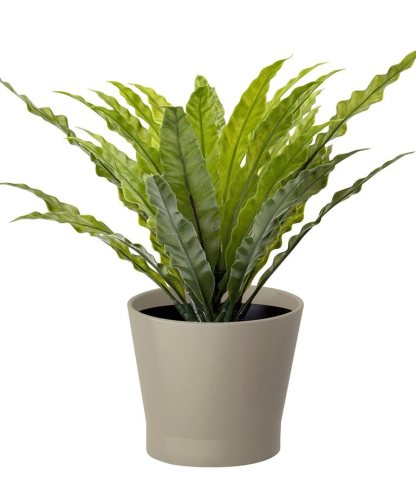 Ikea PAPAJA Plant Pot - £1.75
