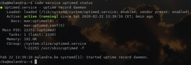 service uptimed status
