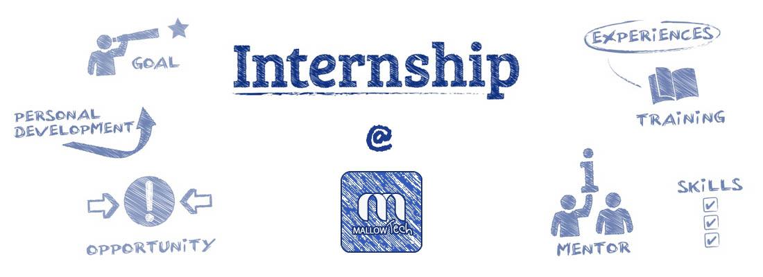 Internship@Mallow