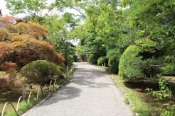 Garten vom Haus