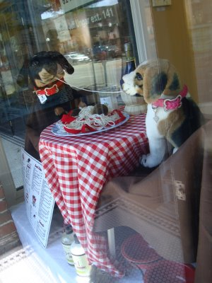 Best Window Display For A Pet Store Part 1