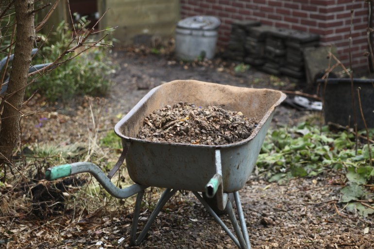 essential gardening jobs for november the handy mano manomano mano do it yourself diy home improvement gardening wheelbarrow outside cold frost