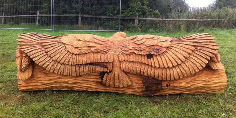 Incredible Chainsaw Carvings wood art artists manomano mano the handy mano eagle bird