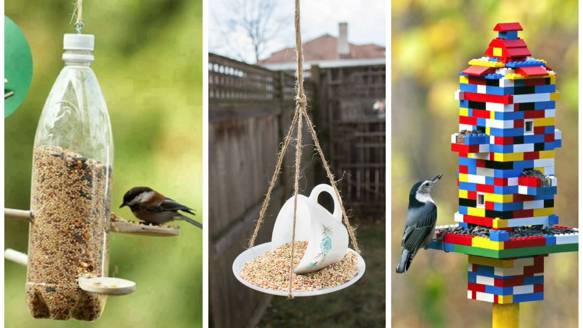 10 simple ways to make a diy bird feeder the handy mano. Black Bedroom Furniture Sets. Home Design Ideas