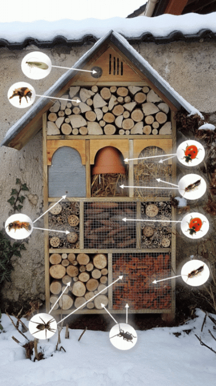 Many bugs can find refuge in a DIY insect hotel