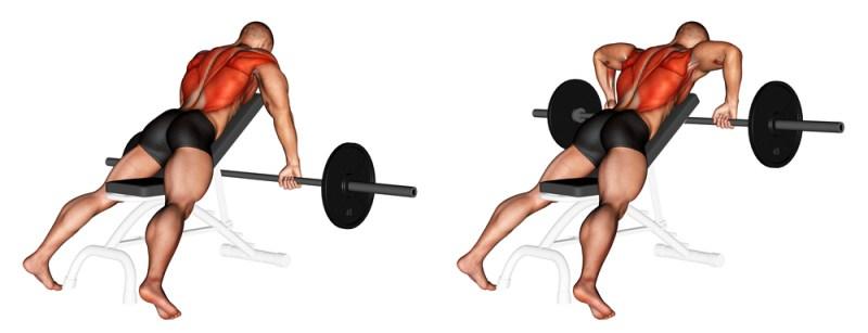Barbell row for upper body strength