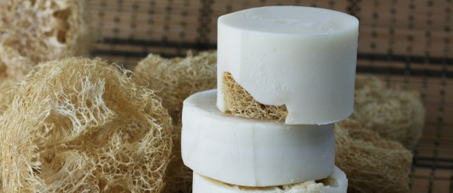 Loofah-Soap-Round