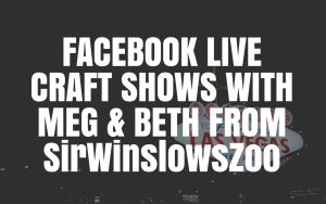 Facebook Live craft shows with Marmalead
