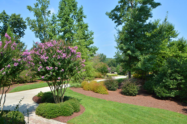 year round landscape provides color and interest