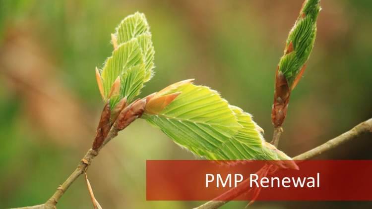 PMP Renewal