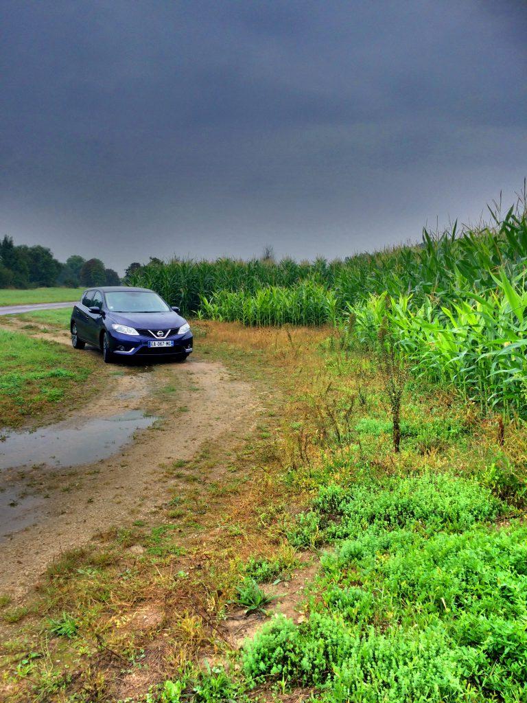 Naapurikylässä maissivarkaissa.