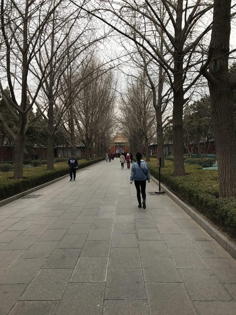 Temppeliin johti pitkä käytävä.