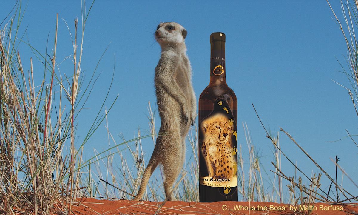 Drosten und Gepardenwein