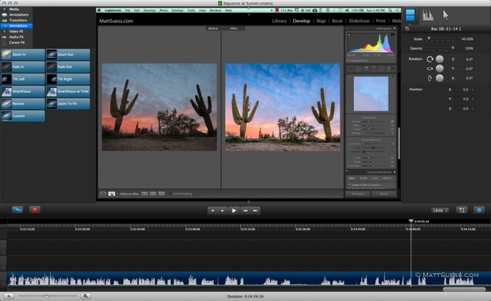 Saguaros-at-sunset