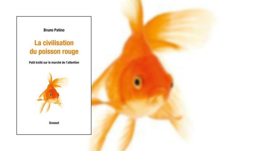 La civilisation du poisson rougee