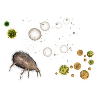 Allergens such as dander, dust mites, pollen, and mould are commonly ...